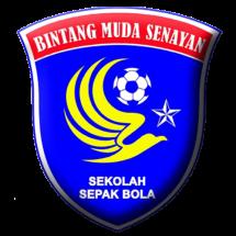 BMS logo2